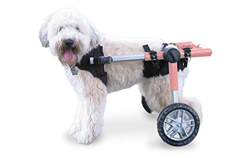Walkin' Wheels Dog Wheelchair - for Medium Dogs 26-49 lbs - Veterinarian Approved - Wheelchair for Back Legs