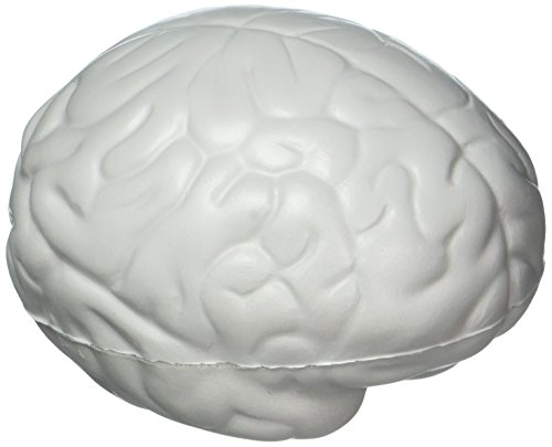 Brain Stress Toy - Gray by Ariel -