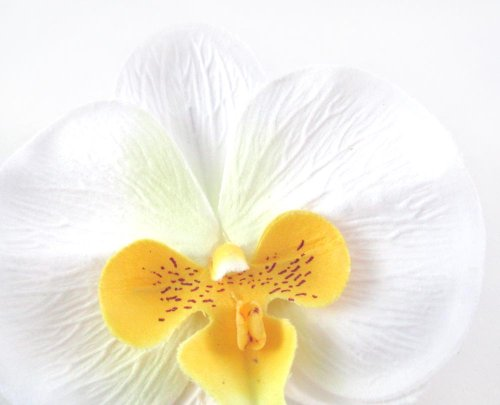 10-White-Yellow-Phalaenopsis-Orchid-Silk-Flower-Heads-375-Artificial-Flowers-Heads-Fabric-Floral-Supplies-Wholesale-Lot-for-Wedding-Flowers-Accessories-Make-Bridal-Hair-Clips-Headbands-Dress