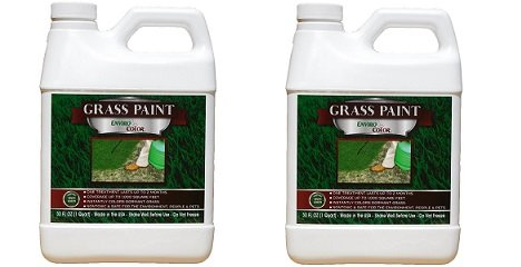 1,000 Sq. Ft. 4EverGreen Grass and Turf Paint (2-Pack)