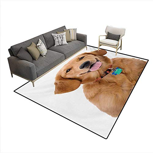 Carpet,Portrait Young Pedigreed Dog Wearing a Collar Tags Domestic Animal,Area Silky Smooth Rugs,Multicolor,5'x6' -