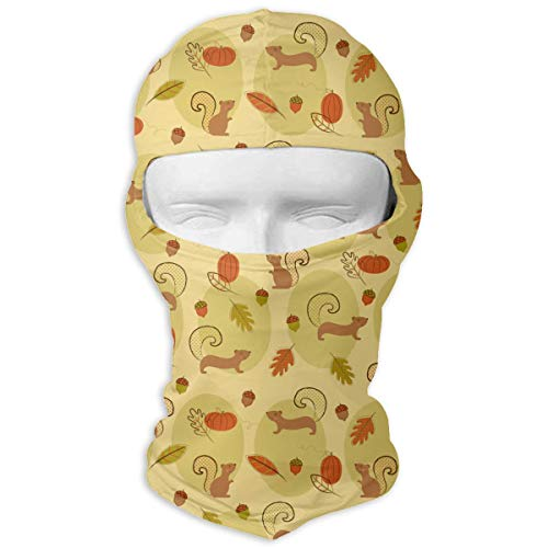 Leopoldson Cute Squirrels Pine Nut Pumpkin Balaclava UV Protection Windproof Ski Face Masks for Cycling Outdoor Sports Full Face Mask Breathable -