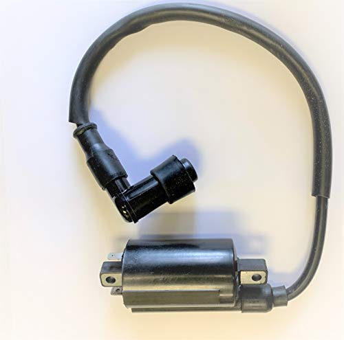 Linhai Manco Talon 250cc - 300cc Ignition Coil Scooter ATV Parts Ignition  Coil