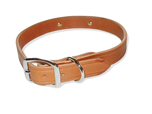 "Warner Brand Cumberland Leather Dog Collar + FREE Engraved Brass ID tag (19"" Fits 13-17"" Neck, Golden Tan)"