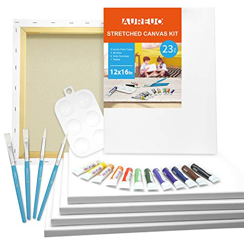 AUREUO Acrylic Painting Set Include 6 Pack 12×16 Inch Stretched Canvas, 12x12ml Acrylic Paints, 4 Paint Brushes & 1…