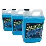 HS 29.606 Bug Wash Windshield Washer Fluid, 1 Gal
