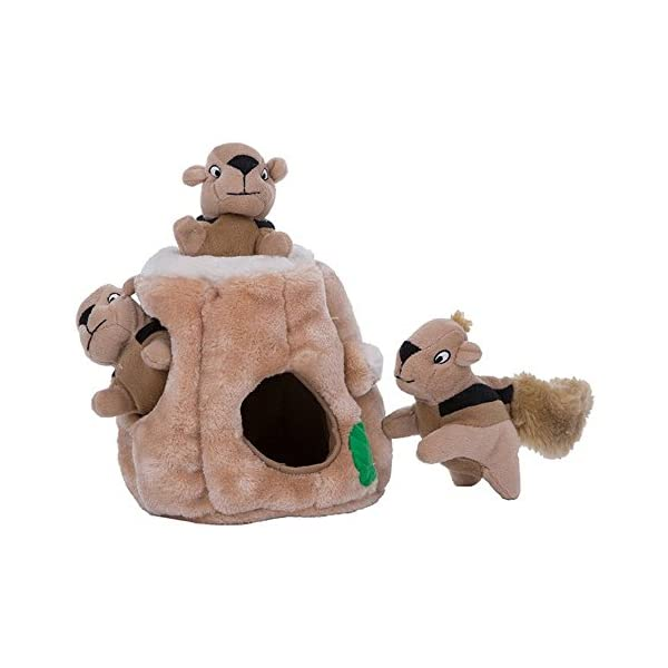 Kyjen Puzzle Plush Hide-A-Squirrel Dog Toy 1