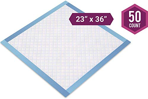 Healthy Spirit Disposable Underpad, 23 X 36 inch, 50 Count