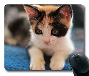 Design Mouse Pad Desktop Laptop Mousepads Calico Kitten Comfortable Office Mouse Pad Mat Cute Gaming Mouse Pad