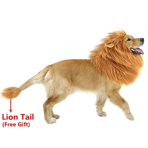 AYOG Lion Mane Costume for Dog, Dog Lion Wig for Dog Large Pet Festival Party Fancy Hair Dog Clothes (Dark Brown with Ear) (Brown with ()