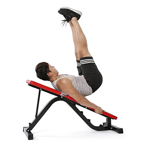 Tomshoo Adjustable Ab Sit Up Bench Incline Flat Abdominal Weight Press Bench Home Gym Workout