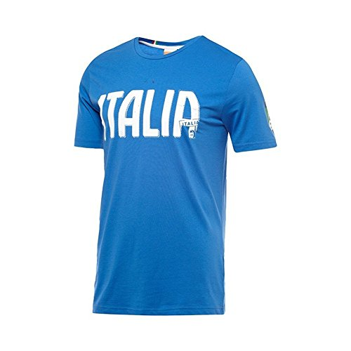 本を読む経歴PUMA FIGC Italia Graphic Tee/サッカー T-シャツ イタリア