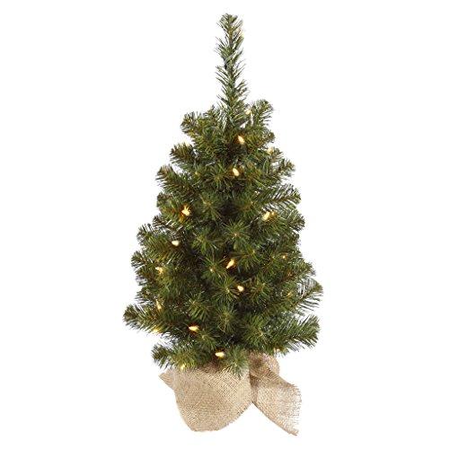 Vickerman Pre-Lit Felton Pine Tree with 50 Clear Mini Lights and Burlap Base, 30-Inch, - Lit Pre Christmas Trees Mini