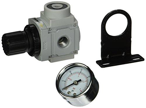 PneumaticPlus PPR2 N02BG 2 Miniature Pressure Regulator