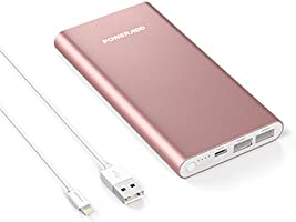 Poweradd Pilot 4GS 12,000mAh External Battery Charger with High-Speed Output(3A+3A) for iPhone 8/8 Plus/X/7/6s, iPad and Samsung Galaxy S8/S7/S6 and More - Silver (Apple Cable Included)