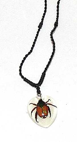 - REAL Shining Chafer Beetle (Glow In The Dark) Necklace (Adjustable Necklace)