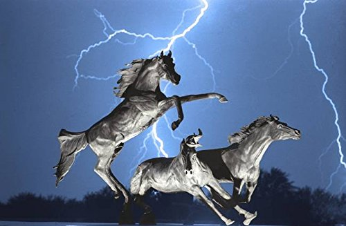 Wall Art Print entitled Lightning Bolts At Horse World BW Color Print by James