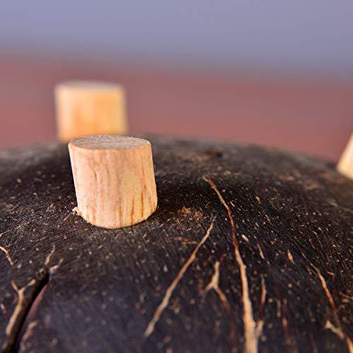 TOOGOO 1 Pcs Creativo Hecho A Mano C/áscara De Coco Natural Envase Caja Jabonera De Ba?o