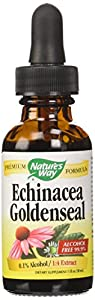 Echinacea-Goldenseal Extract (alcohol free) Nature's Way 1 oz Liquid