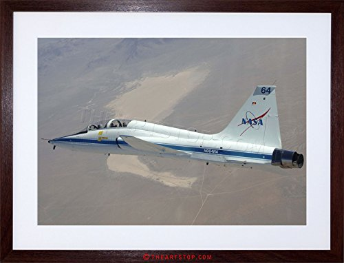 The Art Stop WAR Military Plane Fighter Jet NASA Talon for sale  Delivered anywhere in USA