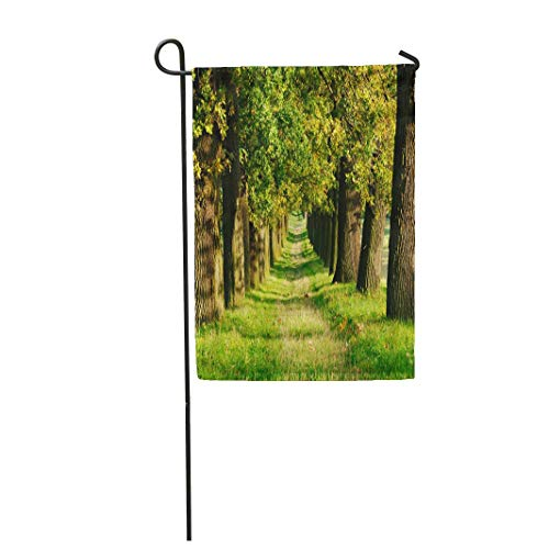 Tarolo Decoration Flag Allee Avenue of Old Oak Trees by The Sun in Early Autumn Grassy Road Fall Footpath Thick Fabric Double Sided Home Garden Flag 12
