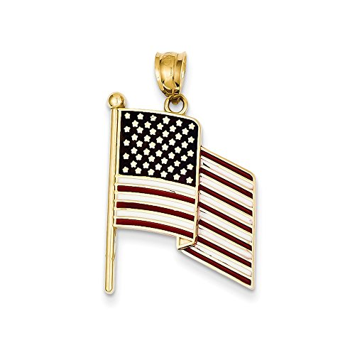 Pendant Charm Usa Flag (14K Yellow Gold Enameled American Flag Charm Pendant)