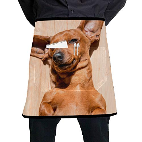 ZXWXNLA Aprons Half Waist Basset Hound with Flying Ears Short Waitress Apron with Large Pocket Unisex for Kitchen Crafting BBQ Drawing