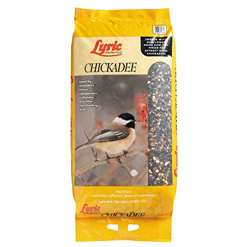Lyric 390490 20 lb. Chickadee Premium Sunflower & Nut Wild Bird Mix, 20 Pound (Best Lawn Seed For Pacific Northwest)