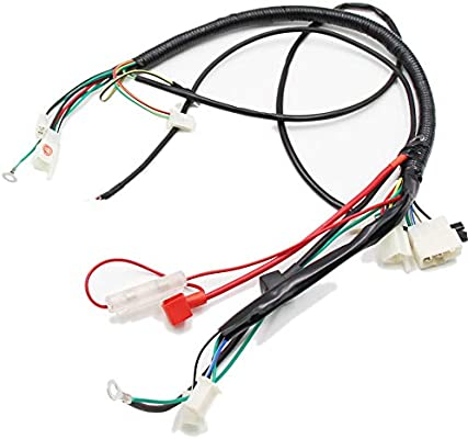 Amazon.com: Lifan 200cc Engine Wire Loom Harness Wiring Assembly For Honda  Motorcycle ATV Enduro Bike: AutomotiveAmazon.com