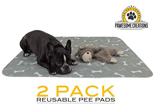 Reusable Training Pee Pad for Pets | Large 31 x 35 Inches | Grey | Value Pack of 2 | Perfect for Dogs and Pets all Sizes | Environmentally Friendly | Washable Easy to Care -