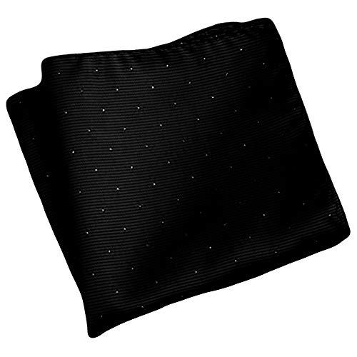 Flairs New York Gentleman's Essentials Weekend Casual Pocket Square Handkerchief (Raven Black [Glitter Dots])