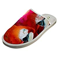 4B854DF6B Cotton Red Parrot Macaw House Slippers Baboosh Chinela Slipper