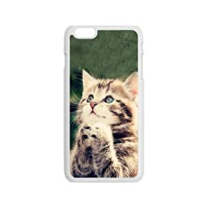 """Cute Funny Cat Hot Fashion Design Case for iPhone6 4.7"""" Style 04"""