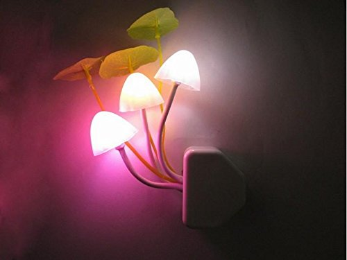 DJDesigns Custom Dreamtime 'Shroom Night-Light