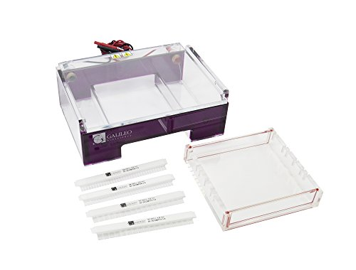 Galileo Bioscience 81-1515 ExpressCast Horizontal Agarose Gel Electrophoresis System, 15cmW x 15cmL gel size