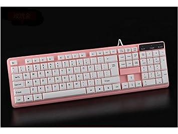 Sky-Grow Teclado para Juegos Computadora de Teclado con Cable USB a Prueba de Agua Plug and Play Teclado estándar (Rosa) Teclado de Moda: Amazon.es: Hogar