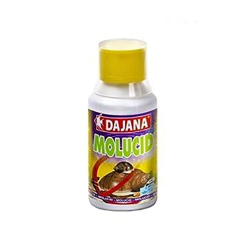Dajana molucid 100 ml - Preparato para eliminar Le Caracoles indesiderate de acuario dulce o Estanque: Amazon.es: Deportes y aire libre