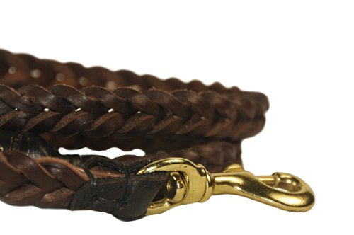 Dean and Tyler Comfort Braid Dog Leash, Brown 6-Feet by 3/4-Inch Width With Rolled Handle And Solid Brass Hardware., My Pet Supplies