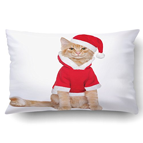 Emvency Pillowcases Xmas Dec Red Fluffy Kitten Wearing Santa Claus Outfit Pillow Case Cushion Cover Case Throw Pillow Case Lumbar 20x30 (Ginger Cat Costumes)