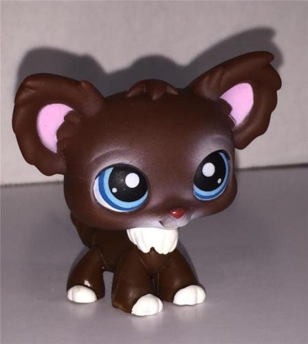 Brown Chihuahua - Chihuahua #219 (Brown, Blue Eyes, Pink Ears) - Littlest Pet Shop (Retired) Collector Toy - LPS Collectible Replacement Single Figure - Loose (OOP Out of Package & Print)