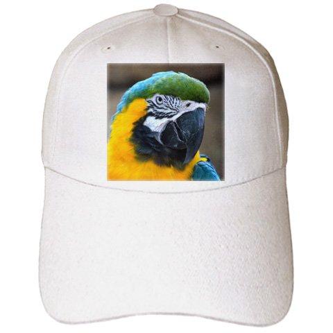 [Susans Zoo Crew Animals - blue and gold macaw parrot head view c - Caps - Adult Baseball Cap] (Parrot Head Hat)