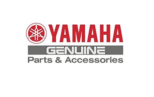 Yamaha 6D3-R1333-01-00 SCREEN, INTAKE; 6D3R13330100 ()