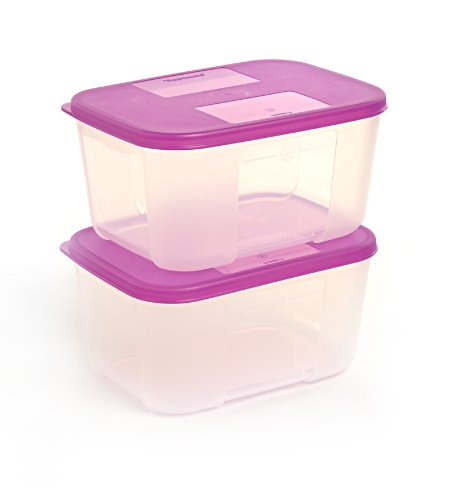 Tupperware Freezer Mate Refrigerator Containers Set of 2pcs (Small 700ml)