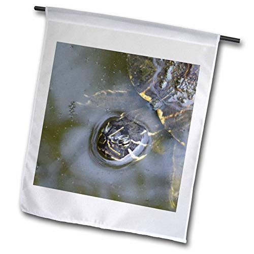 3dRose Susans Zoo Crew Animal - Florida River Cooter Turtle Head - 18 x 27 inch Garden Flag (fl_294135_2)