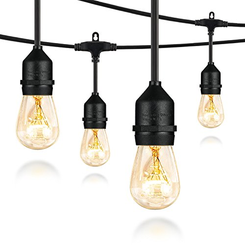 Salking 36FT Outdoor String Lights, Decorative Globe Commercial Waterproof String Lights with Edison Vintage Light Bulbs, Connectable Lights for Patio Garden Wedding Party Christmas (Double Fuse) by Salking