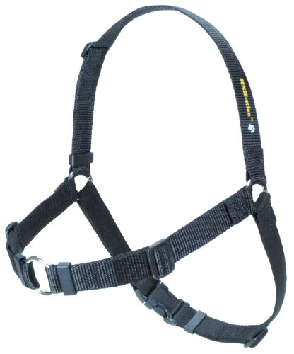 SENSE-ation No-Pull Dog Harness – Large/Wide (Black), My Pet Supplies