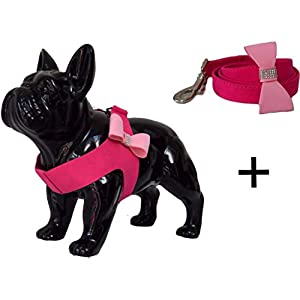 Bowtie Dog Harness and Leash Set for Small Dogs and XSmall Dogs in Pink Black or Blue Soft Vest Step in Style Suitable for Dogs, Cats, Kittens, Rabbits, Puppy, Bunnies
