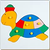 Little Genius Tortoise, Multi Color