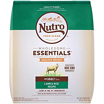 Amazon.com: NUTRO WHOLESOME ESSENTIALS Natural Healthy
