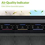 Winix 5500-2 Air Purifier with True